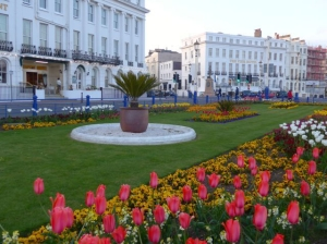 Eastbourne-Spring-Flowers