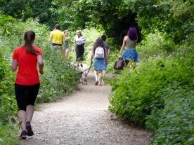 Parkland-Walk2