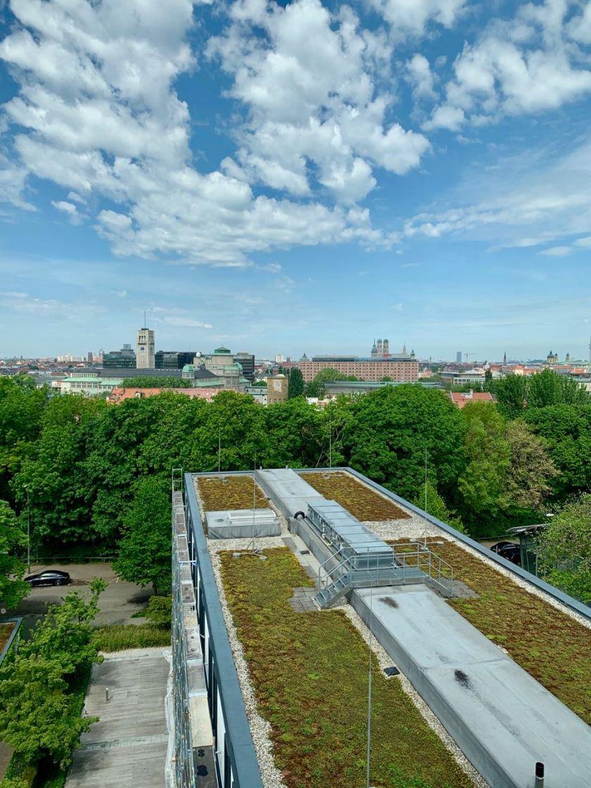Mü-Skyline+Dach